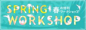 ws_spring_2017